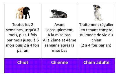 Vaccin Chiot Calendrier.Vaccins Et Vermifuge Pension Du Bois A Ban